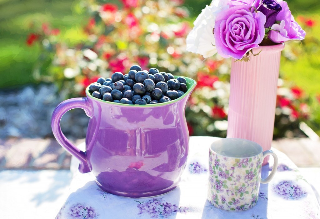 blueberries-864627_1920